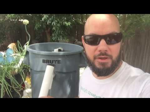 Aquaponics - Cleaning my Sand / Gravel Filter - EASY!