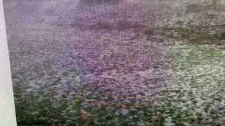Hail Apocalypse Hits Denver Colorado