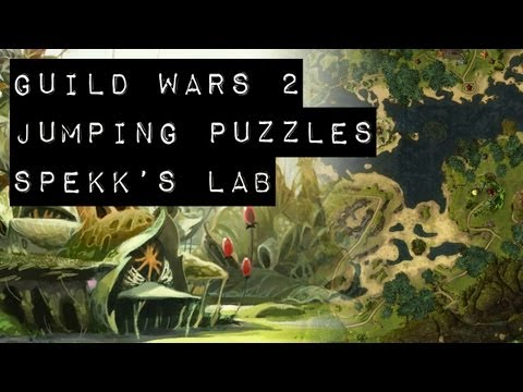 Guild Wars 2 Puzzle Achievements - Spekks Lab