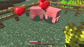 Minecraft: Pig PRON XXX
