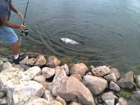 Wiper fishing lenexa ks part 2 youtube for Kansas fishing regulations