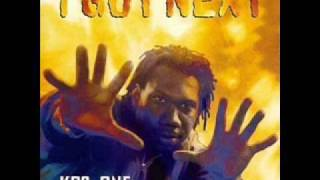 Watch KrsOne Cant Stop Wont Stop video
