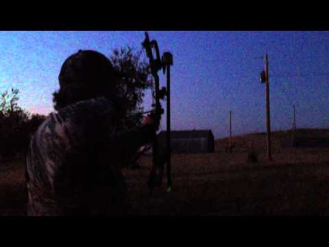 Toxic Broadhead at Night