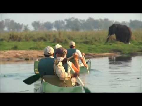 13-Lower Zambezi National Park Zambia.wmv