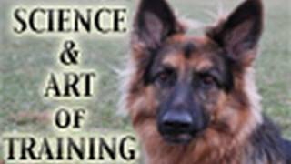 The Science & Art of Training Dogs