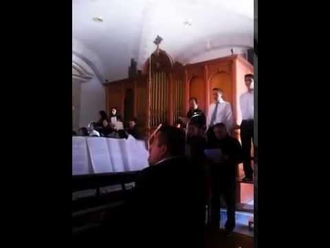 Coro catedral tulancingo. Misericordias domini