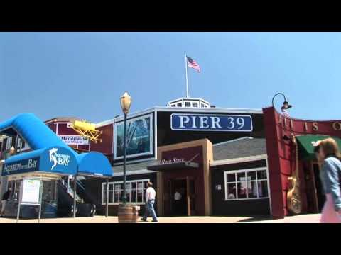 Fishermans Wharf Pier 39 Sea Lions San Francisco Bay California