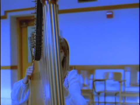 "Joanna Newsom ""Sprout and The Bean"""