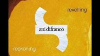 Watch Ani Difranco Your Next Bold Move video
