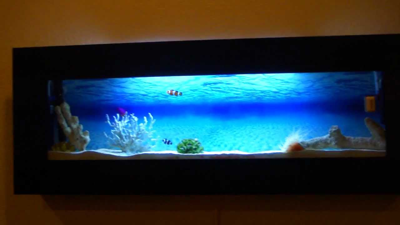 Wall Mounted Aquarium (saltwater) - YouTube