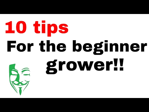 10 TIPS for every autoflower or non autoflower grower!!!! MUST SEE