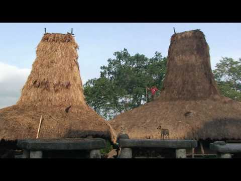 Sumba Island and Bali HD
