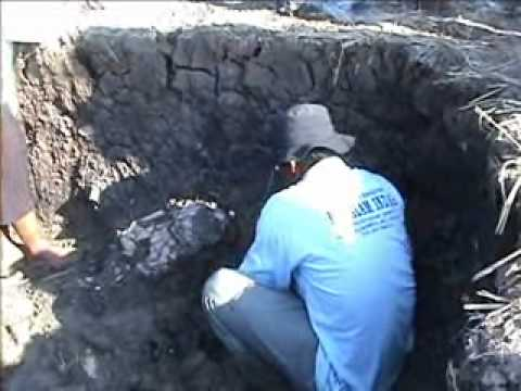 Kerangka Manusia Prasejarah Candi Blandongan