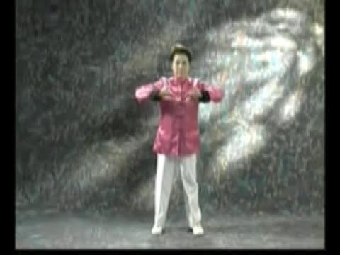 Qi Gong Shibashi (2 parte 1 serie)