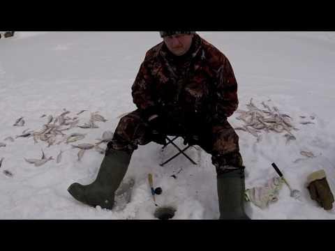 Зимняя  рыбалка река Малая Сыньега