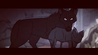 """WOLF"" 