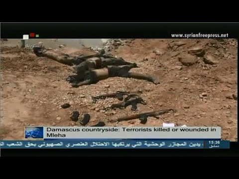 Syria News 15/7/2014, Russia: Syria's sovereignty must be respected by UNSC