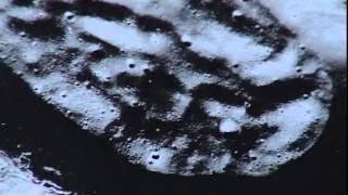Documental - Mirlo Rojo - Ruinas extraterrestres en la luna