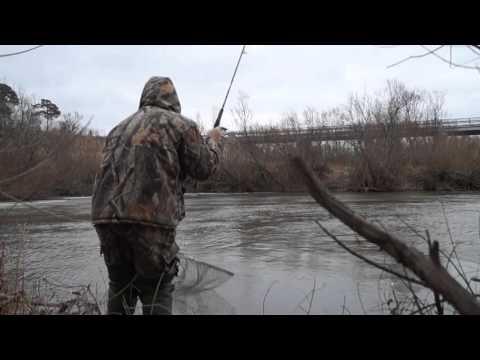 кемеровская рыбная ловля  сверху ине