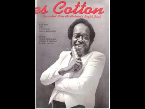 JAMES COTTON - Blow wind - Live at Antone's 1987.
