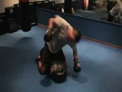 MMA Training - Ground & Pound! Image 1