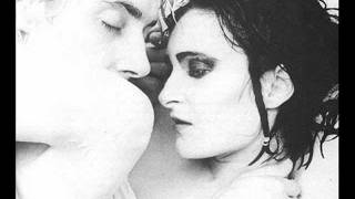 Watch Siouxsie  The Banshees Forever video