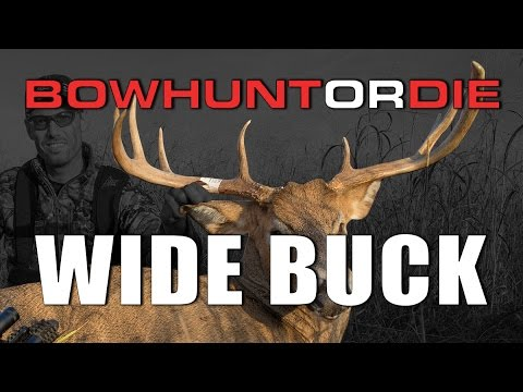 Bowhunting a WIDE BUCK