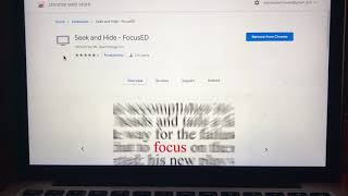 Google Chrome Extension Review— Seek and Hide