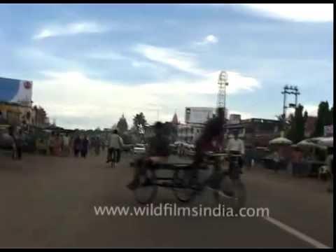Travelling In A Rickshaw In Orissa video