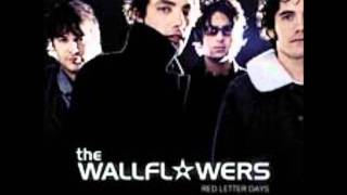 Watch Wallflowers If You Never Got Sick video