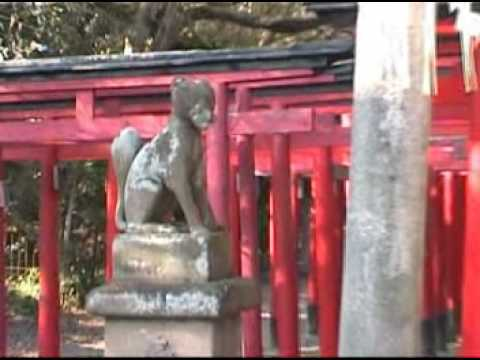Japan Shinto Shrine Gate Japanese Jinja Torii Tori Mon Video