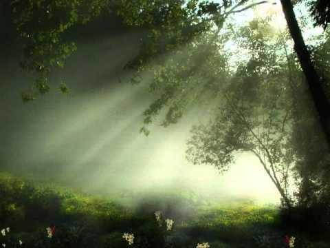 Dianne Reeves - Morning has Broken