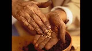 V�deo 2 de Comunidade Cat�lica Shalom