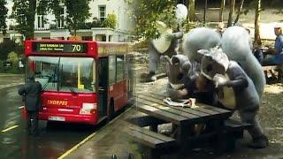 Squirrel Attack Prank - Trigger Happy TV