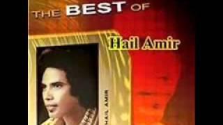 HAIL AMIR : WAJAH KESAYANGAN HAMBA