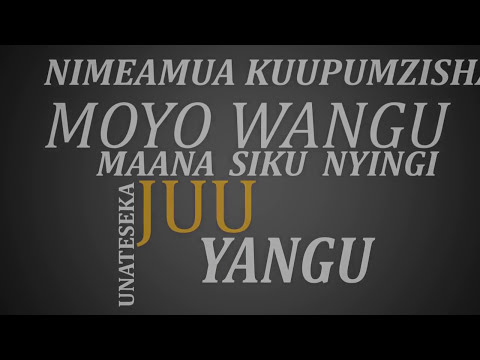 Lameck Ditto - Moyo Sukuma Damu  (Official lyric Video)