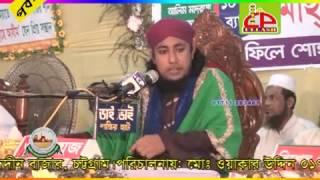 Bangla Waz By Maulana geash uddin taheri2 ullah icp.01711263461