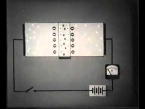 как работает биолипосактор живота
