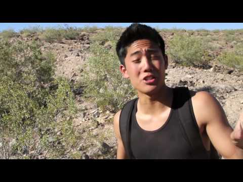Dude vs. Wild - The Desert Music Videos