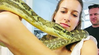 GIRL WITH GIANT SNAKE!! (12.8.13 - Day 1682)