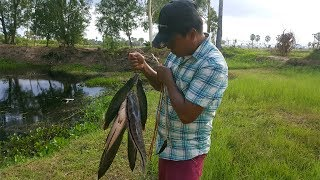 Wow! Amazing Man Make Easy Fish Trap To Catch A Lot Of Fish-Smart Boy Catch Fish With Fish Trap