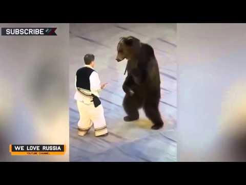 Funny I Video 2015 I Comedy I Russia 116