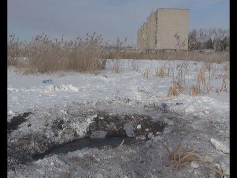 Нашли вмерзший в болото труп