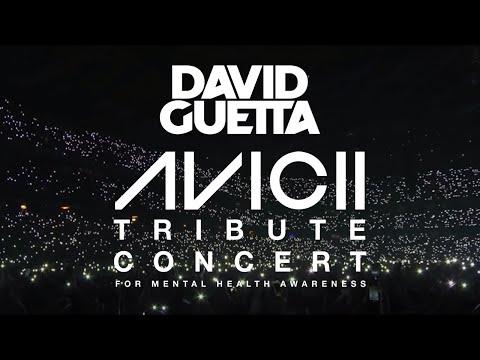 David Guetta - Avicii Tribute Concert