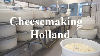 Netherlands/Holland/Chees Making/Jongenhoeve/Bergambacht Part 13