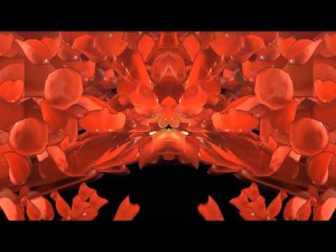 Falling Rosepetals video