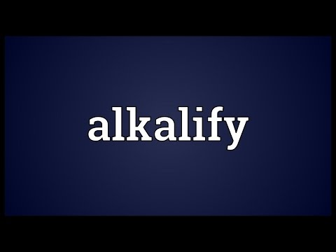 Header of alkalify