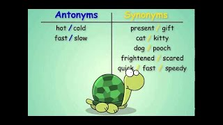Synonyms and antonyms new pattern