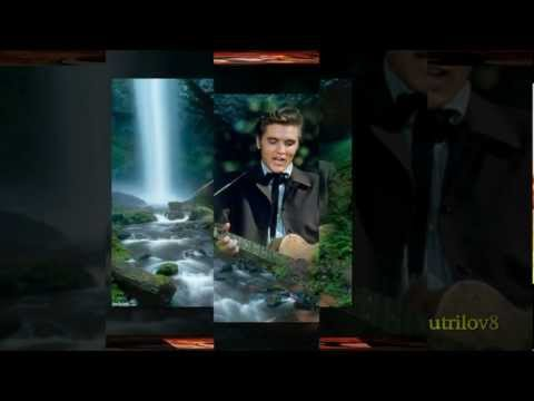 Elvis Presley - Singing Tree (With Lyrics)