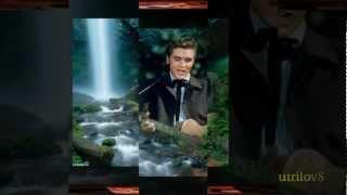 Watch Elvis Presley Singing Tree video
